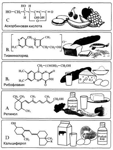 Химия в медицине эссе 8651
