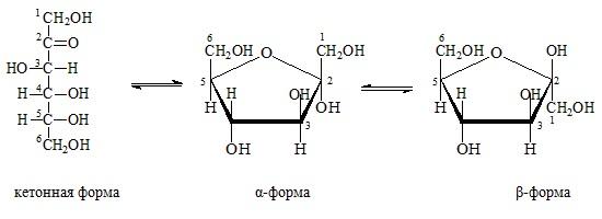 Доклад фруктоза по химии 4917