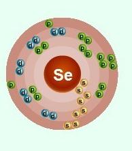 Схематическое строение атома селена